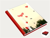 Plexiglas Digital Book
